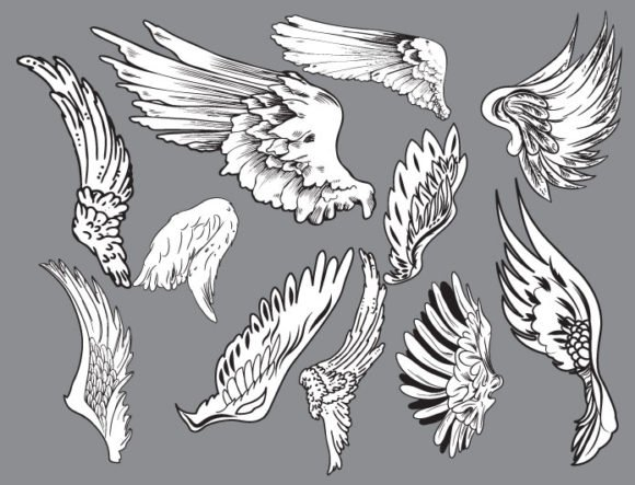 Wings vector pack 6 2