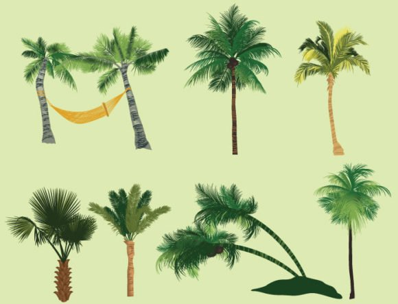 Palm trees vector pack 2 2