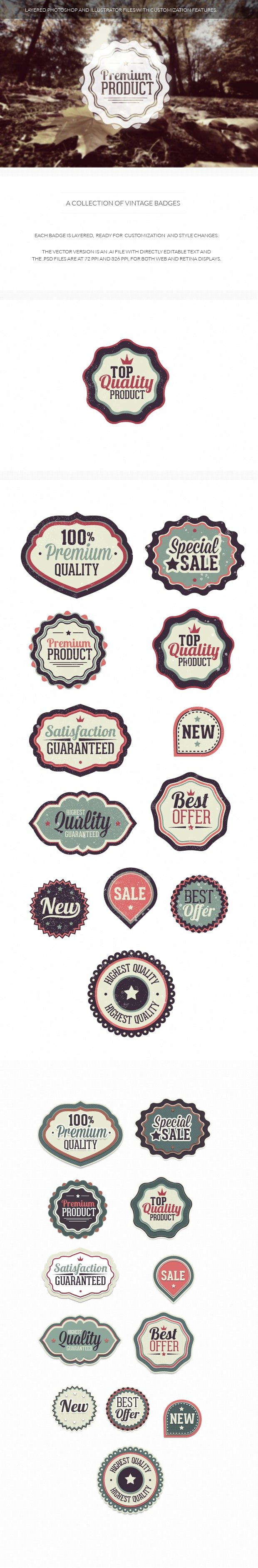 Vintage badges set 1 6