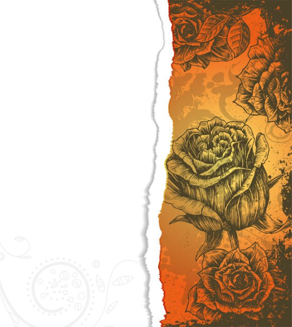 Cardboard Vector Vector Torn Cardboard With Roses 1