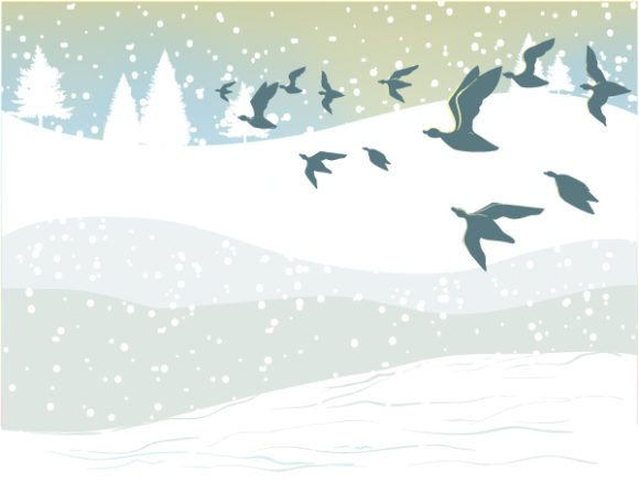 Background, Abstract-2, Vector Vector Design Winter Background With Birds Vector Illustration 1