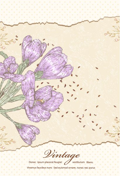 vector vintage background with floral 1