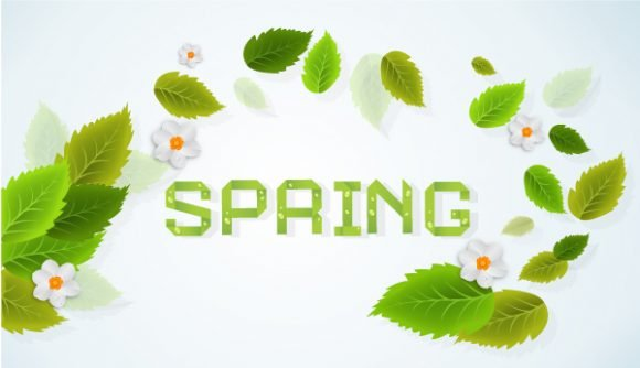 vector spring background with leaves 1