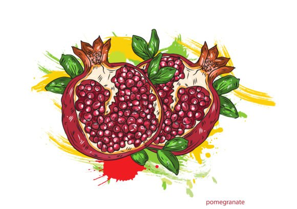Insane Colorful Vector Background: Vector Background Pomegranate With Colorful Splashes 1