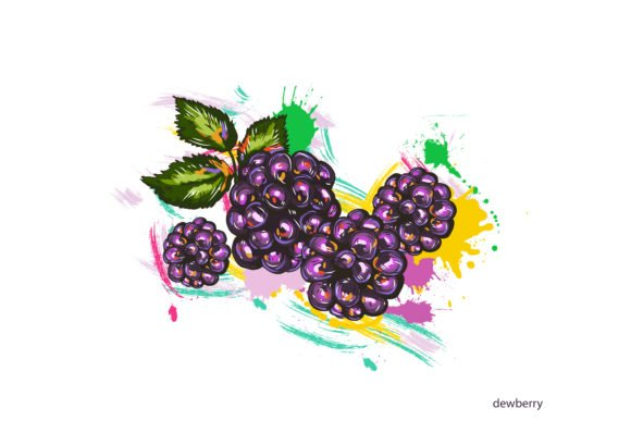 Unique Leaf Vector Image: Vector Image Dewberry With Colorful Splashes 1