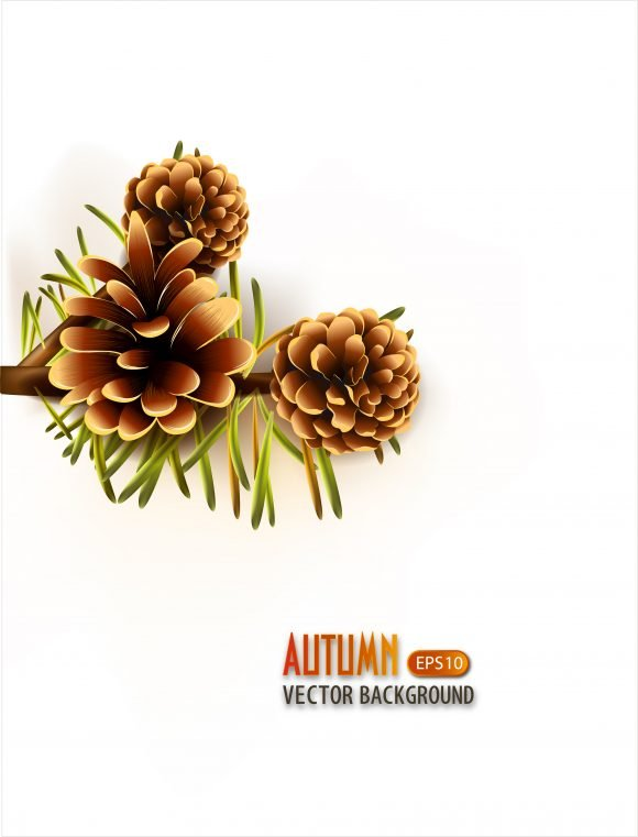 vector autumn background with pine 1