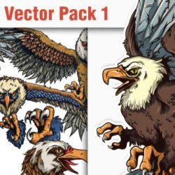 products-designious-vector-eagles-1-small-580x341
